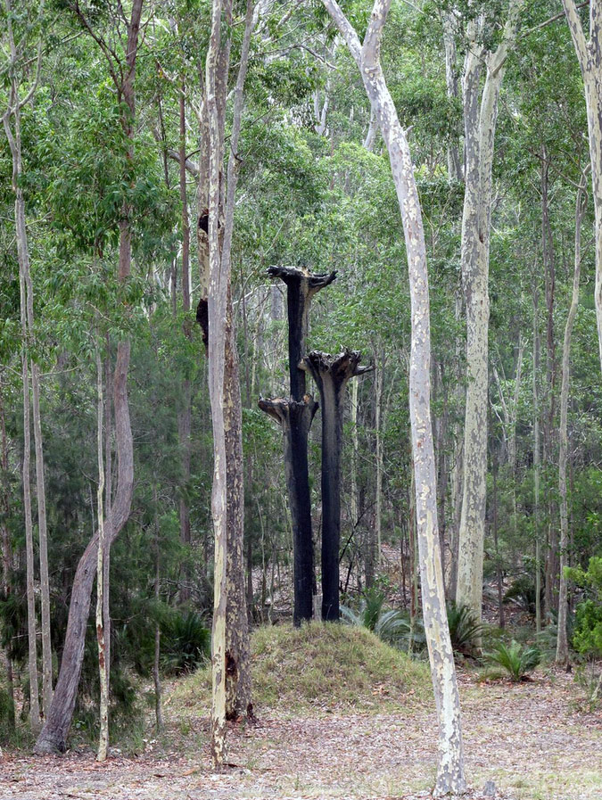 narra-bukulla-sculpture-3