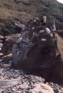 Pebbles on rock