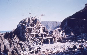 driftwood againt large rock 2