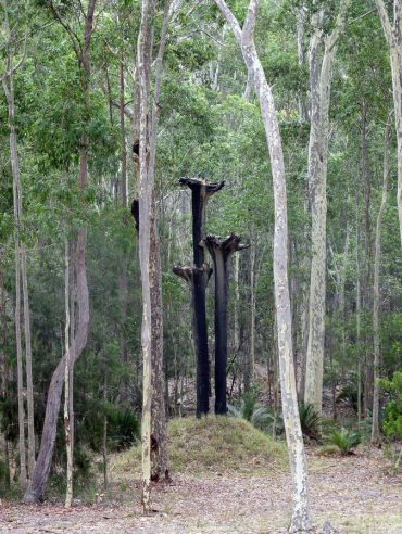 Nurra Bukulla Black-Stump Sculpture