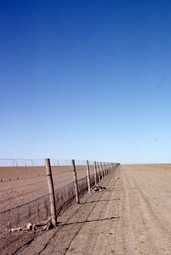1978 – Oxide Street (Dingo Fence)