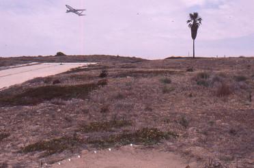 1984 – Los Angeles Airport Olympics exhibition